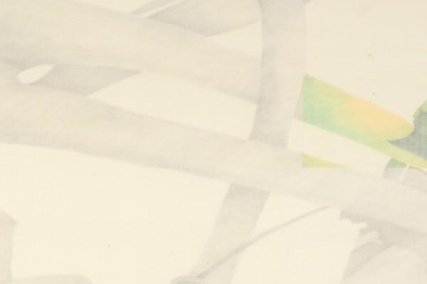 Tineke Vulto - Schatten van de wereld
